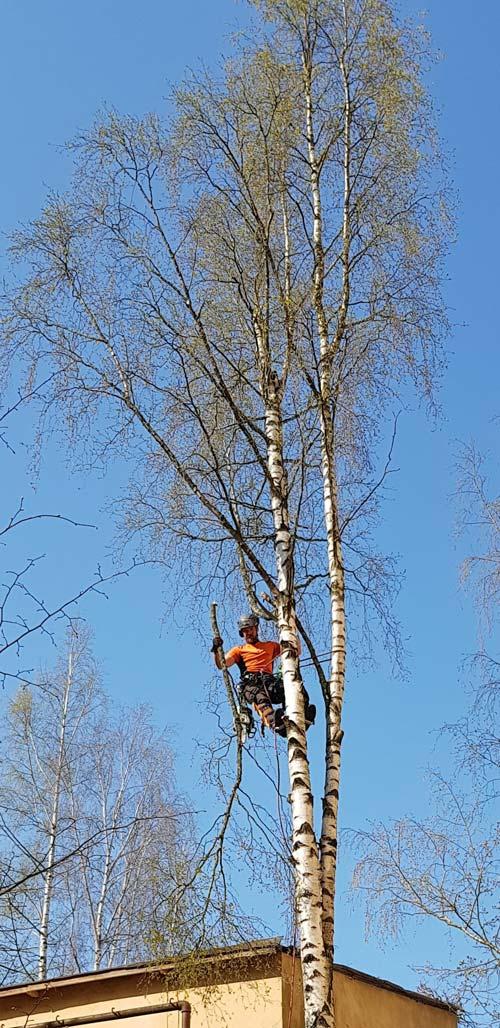 Meiltä onnistuu myös haastavat puunkaadot