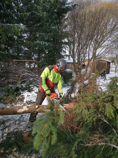 Suoritamme myös haastavat puunkaadot alueilla nurmijärvi klaukkala ja vantaa